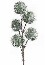 77614-pinetree-ball-columbine.jpg