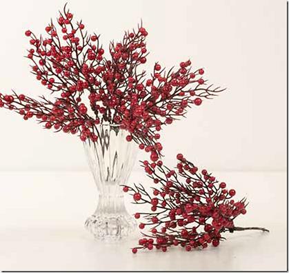 grene-med-redberries-2.png