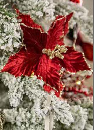 julestjerne-red.png