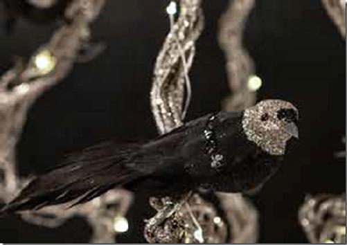 sort-fugl.png