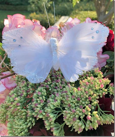 hvid-sommerfugl.png