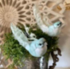 lys-blue-grøn-fugl.jpg