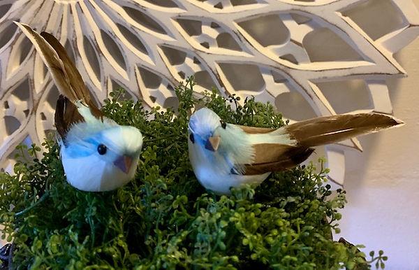 blue-fugl-2.jpg