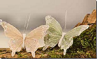sommerfugle-2.png