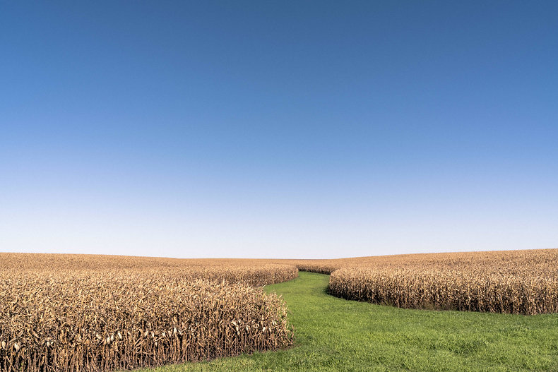 gratisography-field-blue-sky-5000.jpg