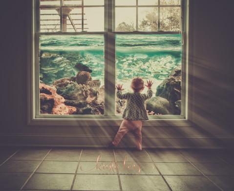 Huntsville Child Aquarium