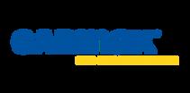 carmax-logo-png