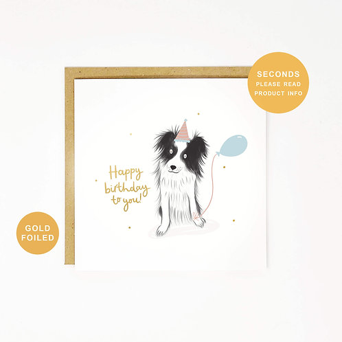 Collie Dog Seconds Sale Birthday Greeting Card by Abbie Imagine