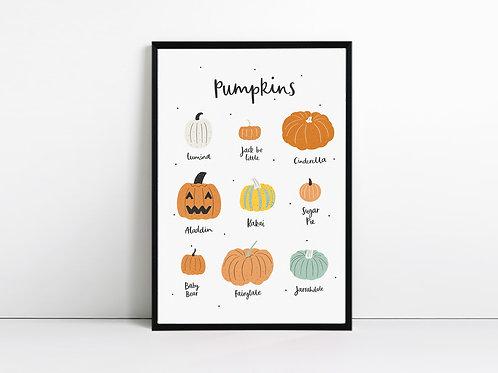 Types of Pumpkin Print