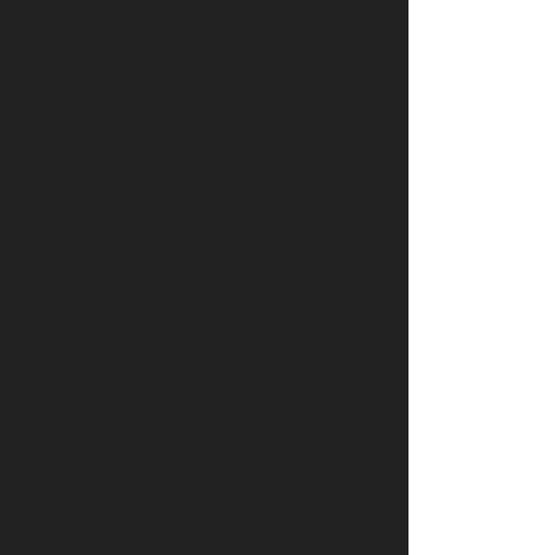 Human_Rights_Campaign_Foundation-logo-B5