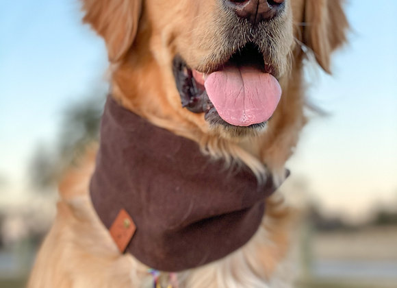Mousse's Scarf