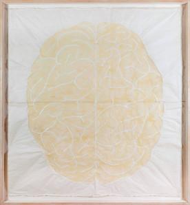 Cervell 1999