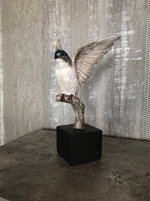 Swallow on branch in resin