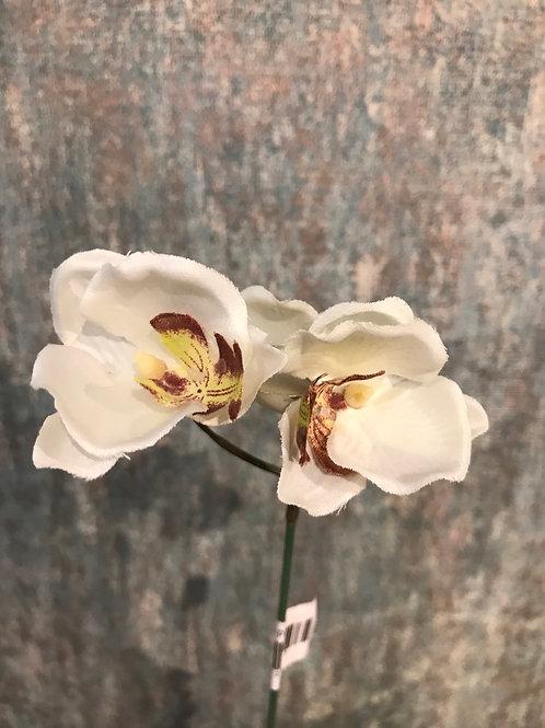 Small Orchid Pick Cream
