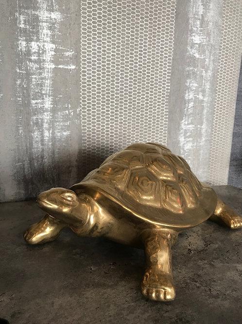 Teracotta turtle