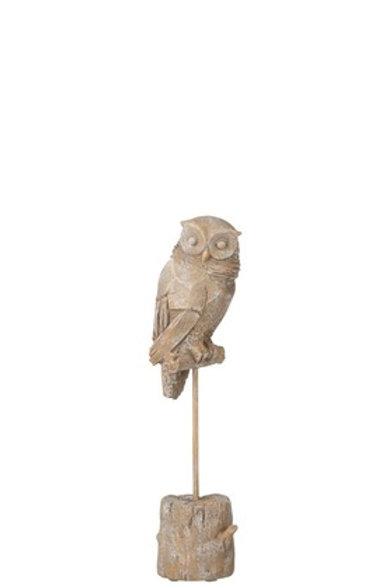 Owl On Foot