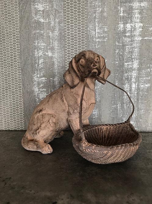 Dog with basket