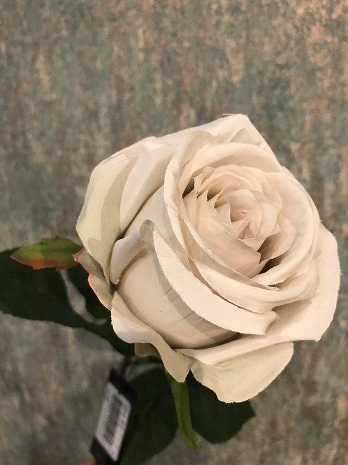 Rose Beige