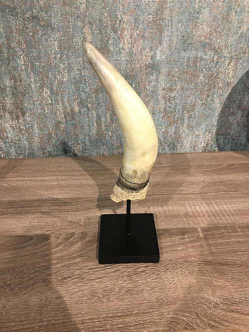 Horn on stand