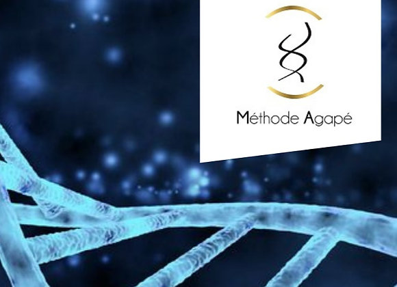 Hypersensibles -Thérapeutes et relation d'aide. Formation &Accompagnement 9 mois