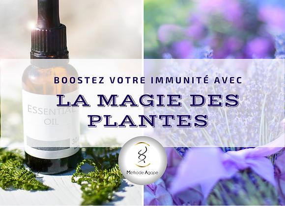 """Formation en ligne """"Boostez votre Immunité avec la Magie des Plantes"""""""