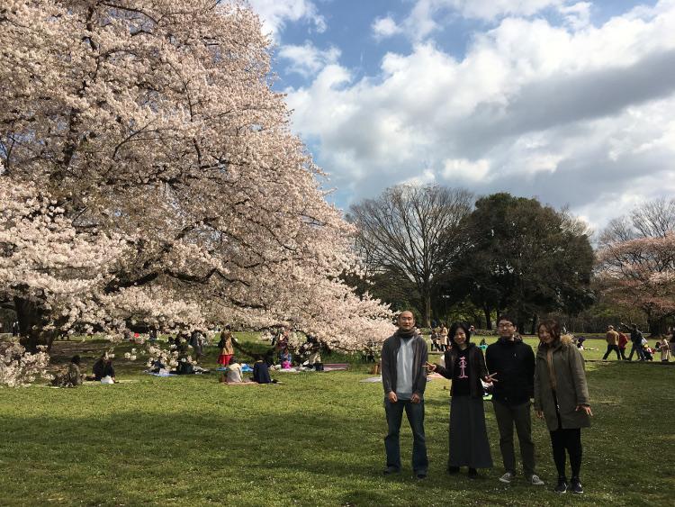 Hanami @ Kinuta park
