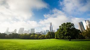 New_York_Central_Park_uhd.jpg
