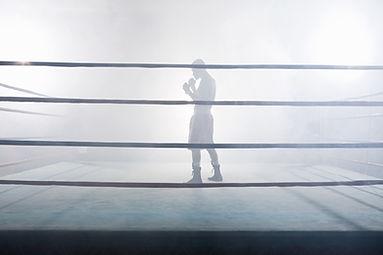 Im Boxring