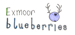 Exmoor Blueberries