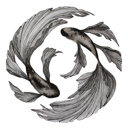 Circle: Yin Yang Fish Print