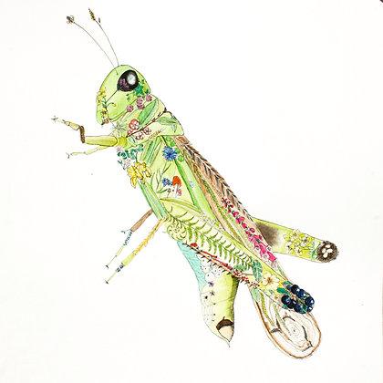 Grasshopper Life Print