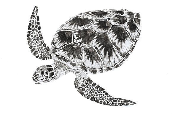 The Turtle print