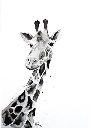 Ink Giraffe Print