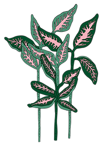 green leafs.png