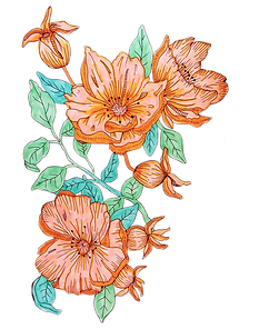rigth flower.png