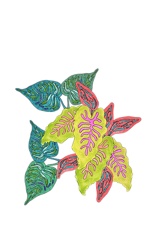 new tropic plant.png