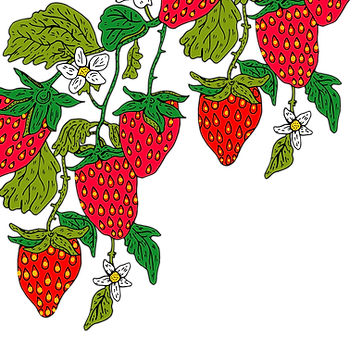 strawberrys.png