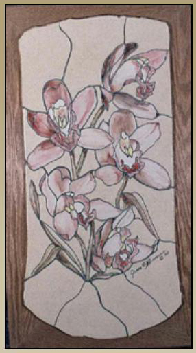 Orchids by Jim