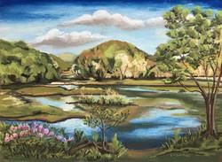 Springtime Marsh