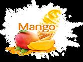 mangova zmrzka_K2_RGB.png