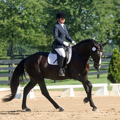 Woman riding a bay horse cantering at a dressage show
