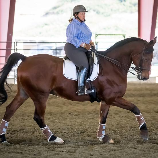 Susan Riding Bay Horse