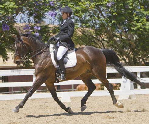 Daria Weinrich Training on her Bay Horse