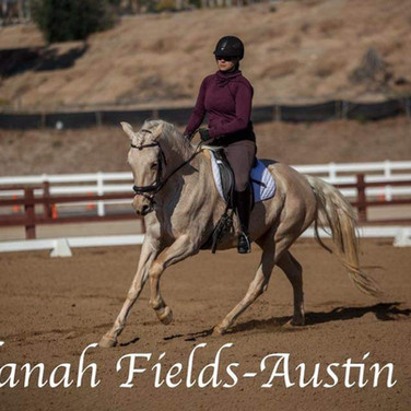 Rider Training On Cream Horse