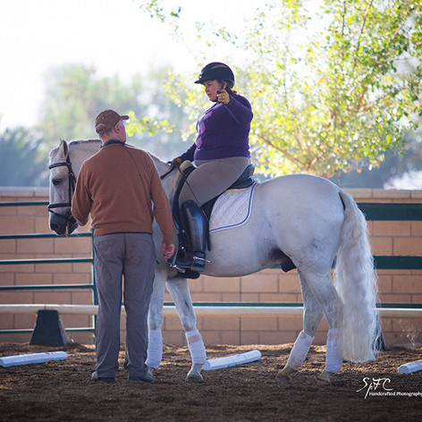 Susan Peacock on white horse training at Conrad Clinic