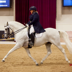 Competing on white horse at dressage show