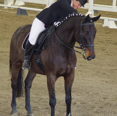 Susan Peacock riding a bay horse standing still at a dressage show