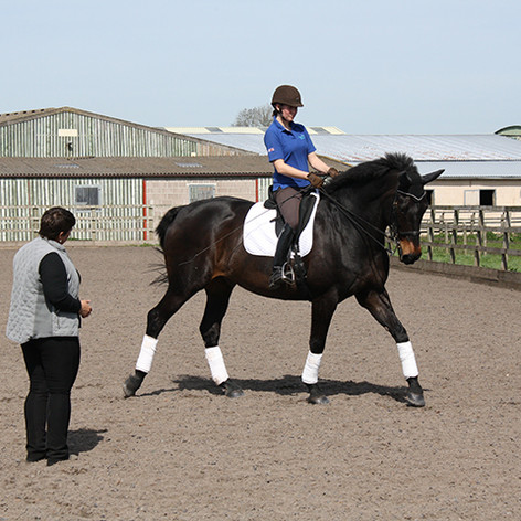 Susan Peacock teaching a lesson to a woman riding a bay horse in a sand arena