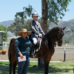 Rider training on bay horse on the ranch