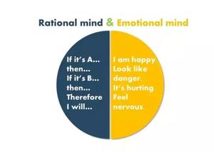 情緒影響行銷策略